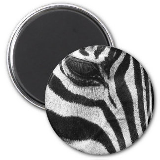 Zebra Stripes Magnet