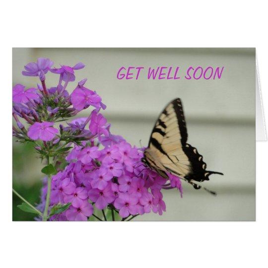 Zebra Swallowtail, Get Well Card