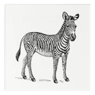 Zebra Wall Art Canvas