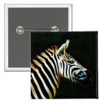 Zebra with black and white stripes in Africa Button