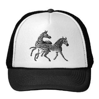 Zebra Zebras Vintage Victorian Wood Cut Art Trucker Hat