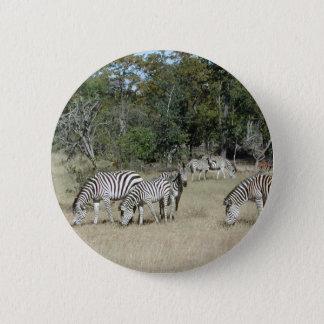 Zebras 6 Cm Round Badge