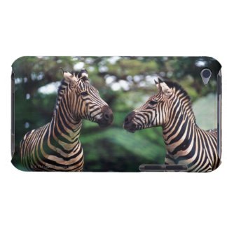 zebras barely there iPod cover