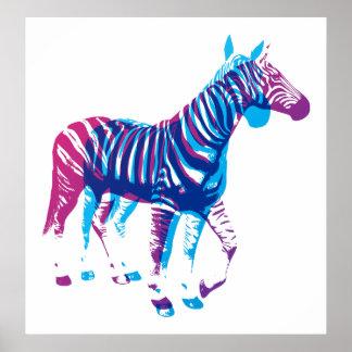 Zebras - Blue Purple Print