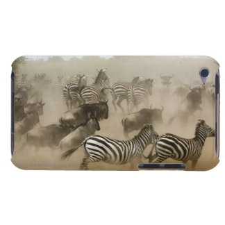 zebras (Equus burchelli) and wildebeest iPod Touch Cases