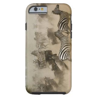 zebras (Equus burchelli) and wildebeest Tough iPhone 6 Case