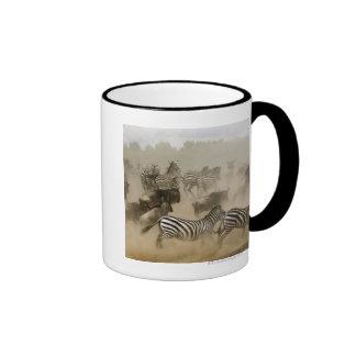 zebras (Equus burchelli) and wildebeest Mugs