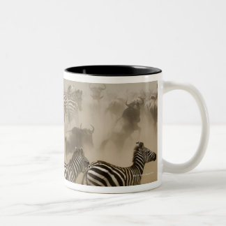 zebras (Equus burchelli) and wildebeest Two-Tone Mug