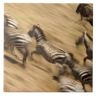 Zebras (Equus quagga) and wildebeest Tile