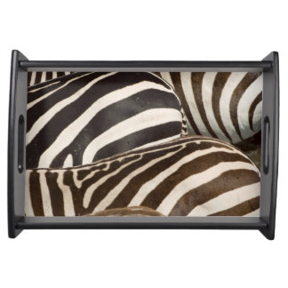 Zebras' (Equus quagga) stripes, Masai Mara Serving Tray
