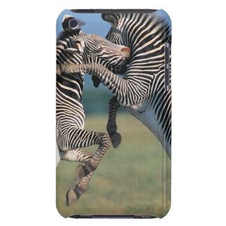 Zebras fighting (Equus burchelli) Case-Mate iPod Touch Case
