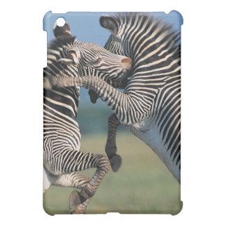 Zebras fighting (Equus burchelli) iPad Mini Cover