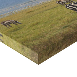 Zebras Grazing in Ngorongoro Stretched Canvas Prints