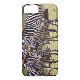 Zebras herding in the fields of the Maasai Mara iPhone 8/7 Case