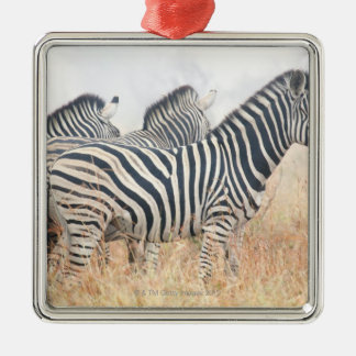 Zebras in early morning dust, Kruger National 2 Christmas Ornament