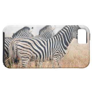 Zebras in early morning dust, Kruger National 2 iPhone 5 Case