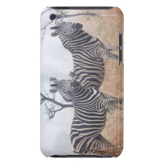 Zebras in early morning dust, Kruger National iPod Touch Cover