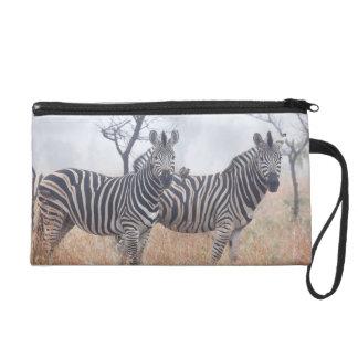 Zebras in early morning dust, Kruger National Wristlet