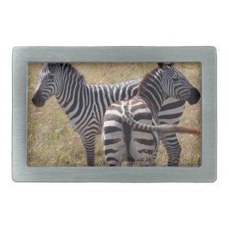 Zebras in Nairobi Kenya Belt Buckle