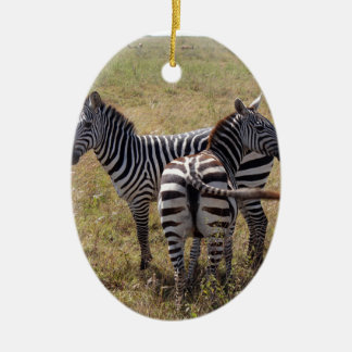 Zebras in Nairobi Kenya Ceramic Oval Decoration