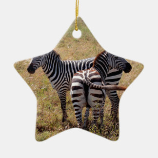 Zebras in Nairobi Kenya Ceramic Star Decoration