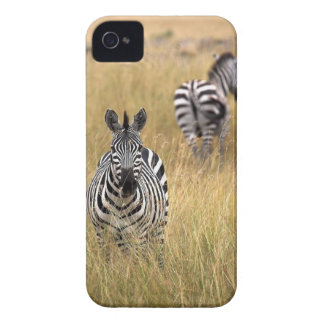Zebras in tall grass iPhone 4 covers