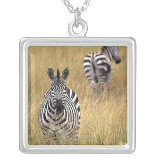 Zebras in tall grass silver plated necklace