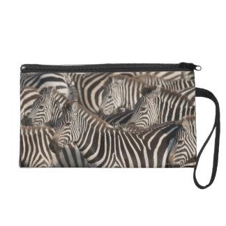 Zebras, Kenya, Africa Wristlet Clutches