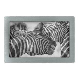 Zebras Rectangular Belt Buckles