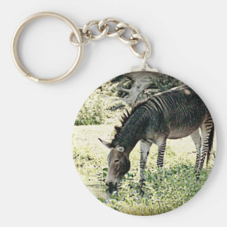 """Zedonk"" Key Ring"