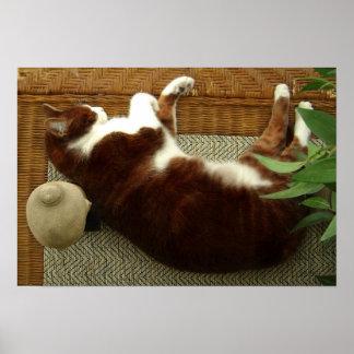 Zen Cat Print