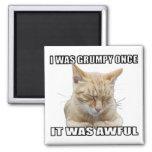 Zen Cat Refrigerator Magnet