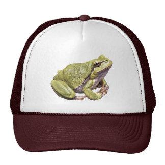 Zen Frog Green Treefrog Meditation Pose Cap