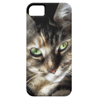Zen Kitty iPhone 5 Cover