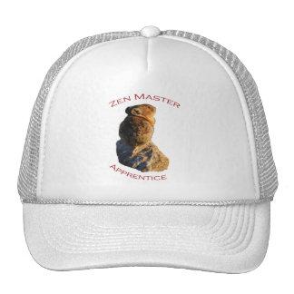 Zen Master Hats