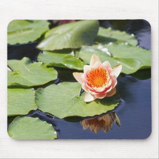Zen Pond Mouse Mat