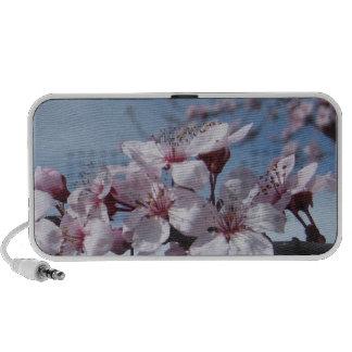 Zen Touch the Sky Cherry Blossom Doodle Speaker