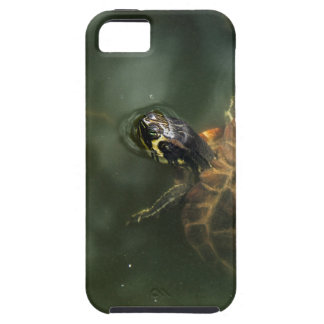 Zen Turtle iPhone Case