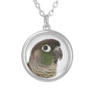 Zeph (green cheek conure) - Necklace
