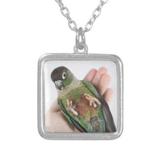 Zeph (green cheek conure) - Necklace 2