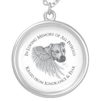 Zeus angel silver plated necklace