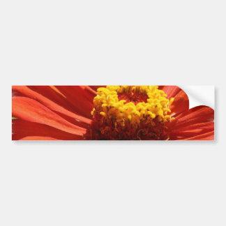 Zinnia Blossom Bumper Sticker