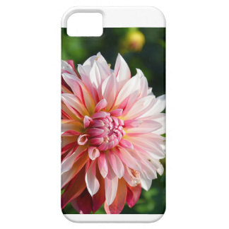Zinnia sunrise barely there iPhone 5 case