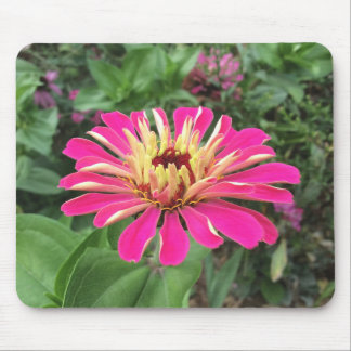 ZINNIA - Vibrant Pink and Cream - Mouse Mat