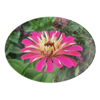 ZINNIA - Vibrant Pink and Cream - Porcelain Serving Platter