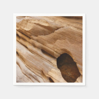 Zion Canyon Wall I Abstract Nature Photography Paper Napkin