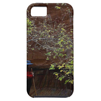 ZION NARROWS AUTUMN iPhone 5 CASES