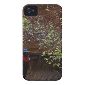 ZION NARROWS AUTUMN iPhone 4 COVERS
