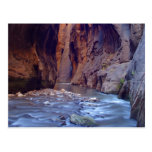 Zion Narrows National Park Postcard