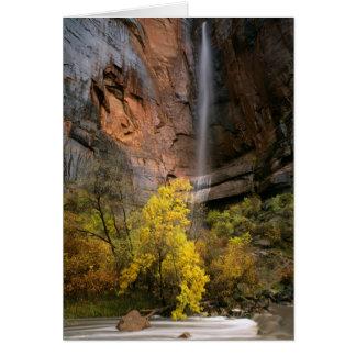 Zion National Park, Utah. USA. Ephemeral Card